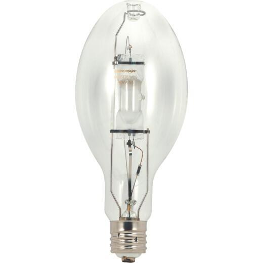 High-Intensity Light Bulbs