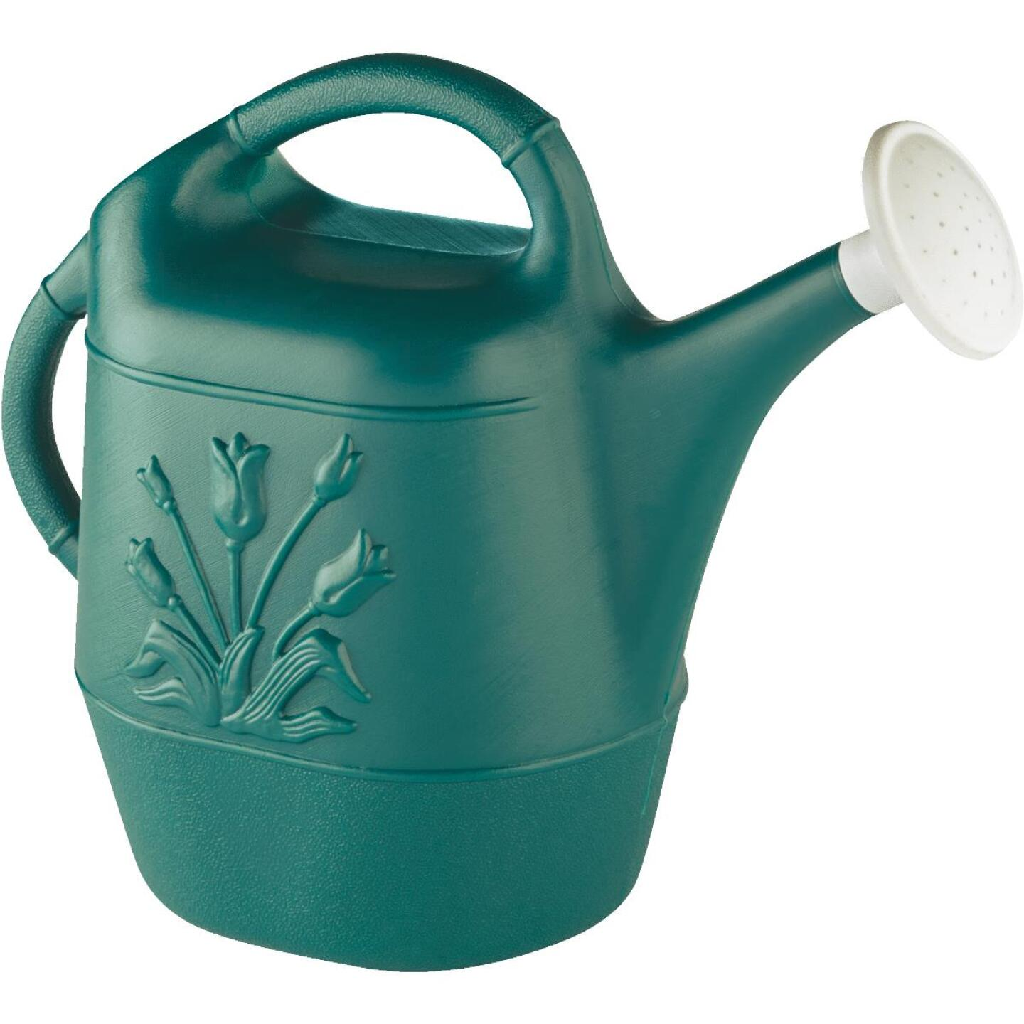 United Solutions 2 Gal. Hunter Green Poly Watering Can Image 1